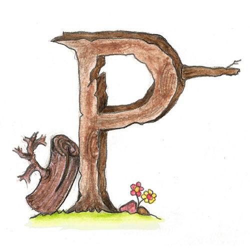Capitular P - Capítulo I