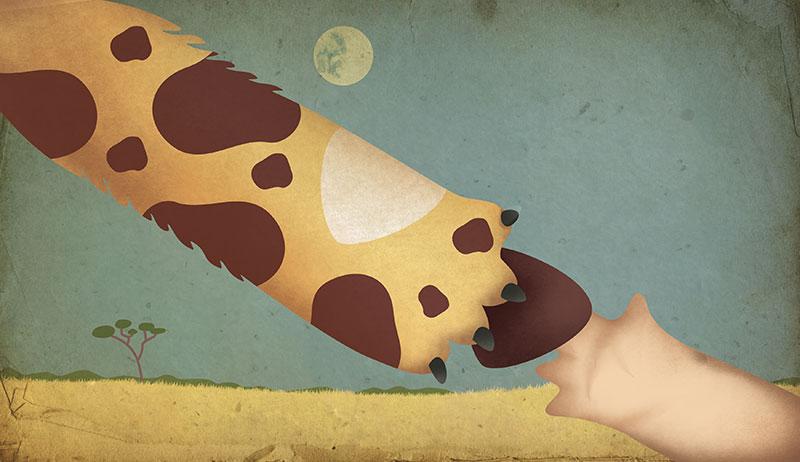 Ilustración mancha de leopardo